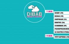 votations-dibab-juin