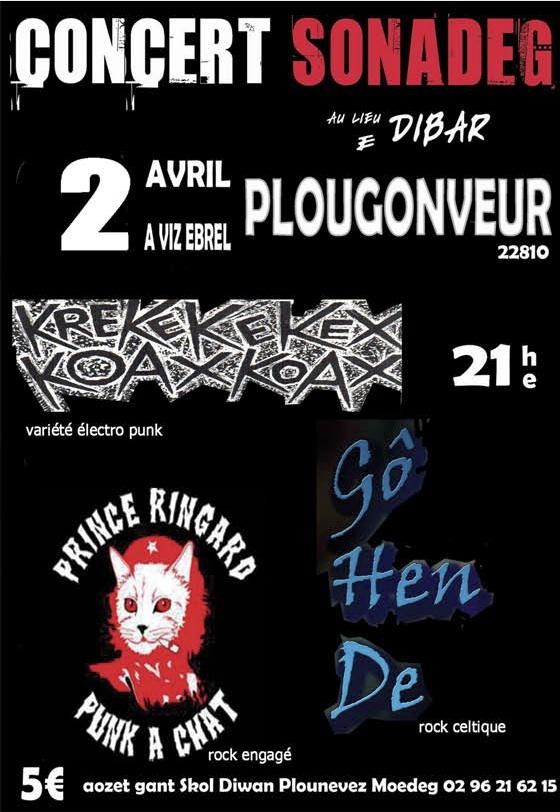Concert_sonadeg_skol-diwan-plounevez-moedeg