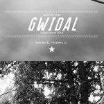 bandeau-bretagne-info-gwidal_harz_labour_13